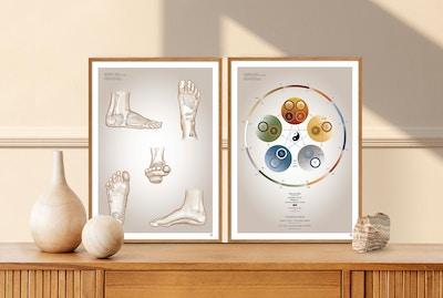 Sæt af 2 plakater om zoneterapi og de 5-elementer af Christian Slot & eAnatomi