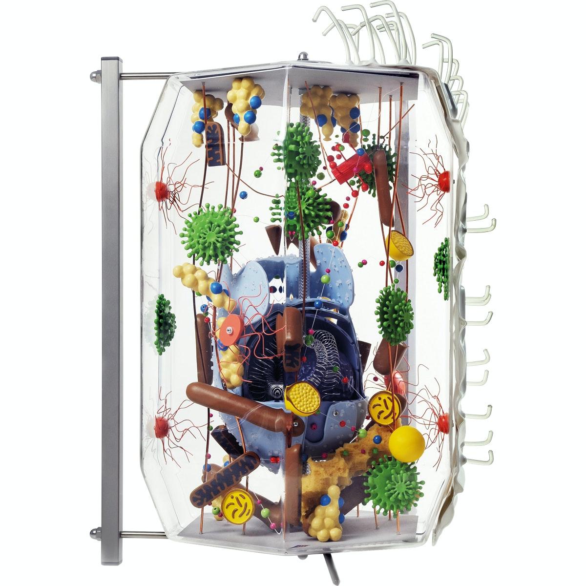 KÆMPE model af en udifferentieret menneskecellen i et elektronmikroskopisk perspektiv