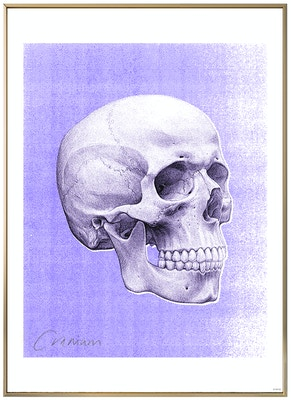 Anatomisk kunstplakat POP3T