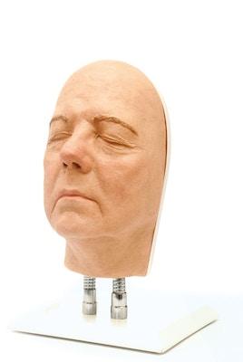 Model af hoved til ansigts injektioner, version B