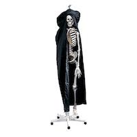 Dammskydd till skelett