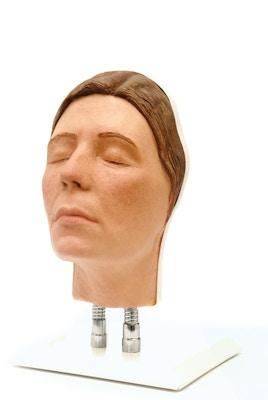 Model af hoved til ansigts injektioner, version E