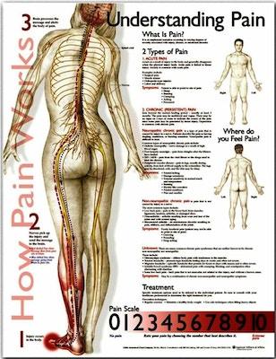 Lamineret plakat om smerte på engelsk