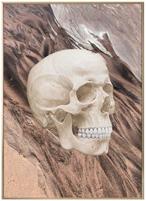 Anatomisk kunstplakat ART2