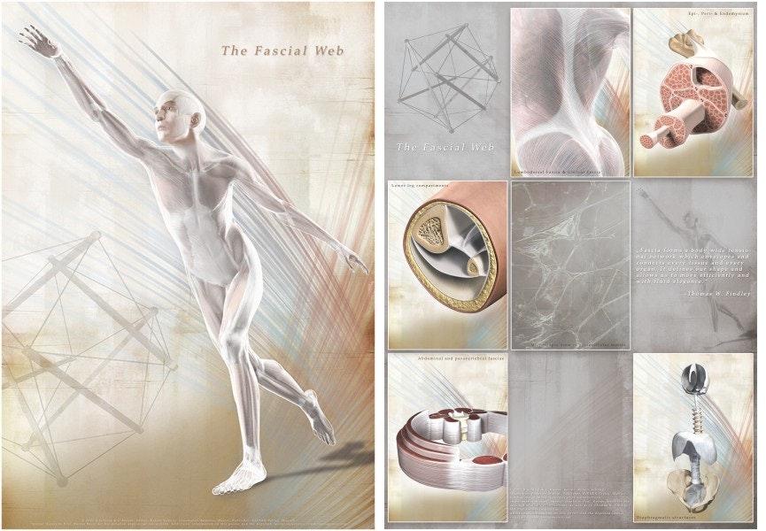 Fascia affischsett 60x85 engelsk tekst