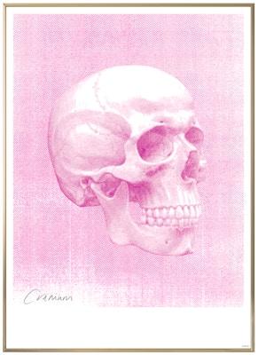 Anatomisk kunstplakat POP7