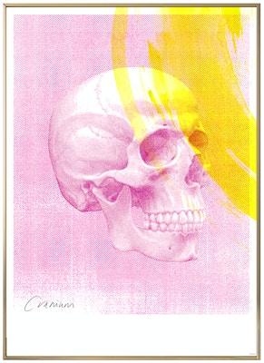 Anatomisk kunstplakat POP6T