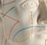 Akupunkturmodell 70 cm för professionellt bruk
