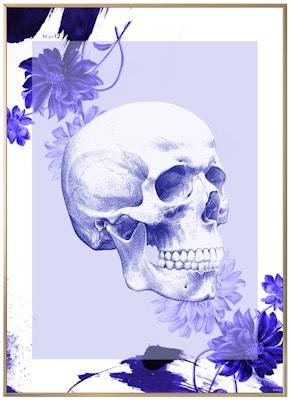 Anatomisk kunstplakat POP1