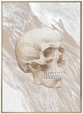 Anatomisk kunstplakat ART6T