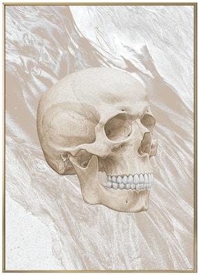 Anatomisk kunstplakat ART6