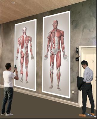 Anatomiske Mega Prints