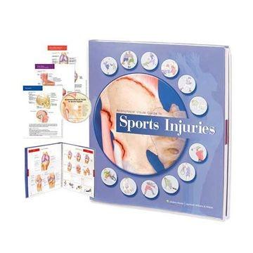 Anatomisk visuel guide til sportskader