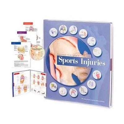 Anatomisk visuell guide till sportskador