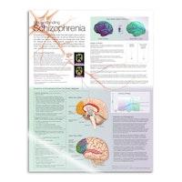 Lamineret plakat om skizofreni på engelsk