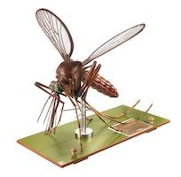 Modell av en mygga