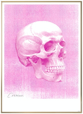 Anatomisk kunstplakat POP7T