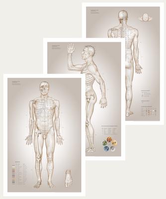 Akupunkturplakater designet af Christian Slot & eAnatomi