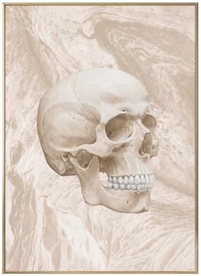 Anatomisk kunstplakat ART4