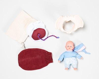 Formindsket sæt fødselsmodeller til undervisningsbrug