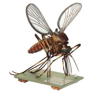 SOMSO Model af en myg