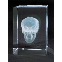 Lille kranie som er laserskåret baseret på 3D-teknik. Leveres i en glasblok