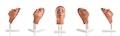 Model af hoved til ansigts injektioner, version C