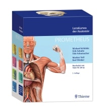 Thiemes NYE Studiekort med ren latin