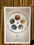 Plakatserien: The Essential Charts - 5-Elementteorien & Organuret af Christian Slot & eAnatomi