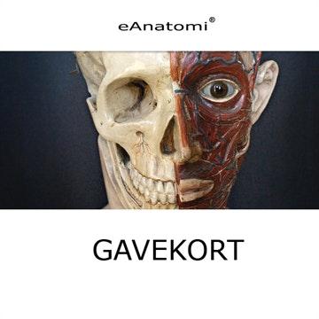 Gavekort til eAnatomi