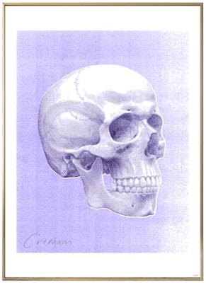Anatomisk kunstplakat POP2