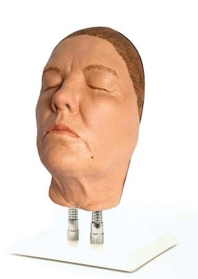 Model af hoved til ansigts injektioner, version G