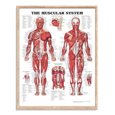 Plakat inkludert ramme i naturlig eiketre