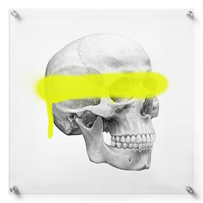 Anatomisk kunstplakat POP4T