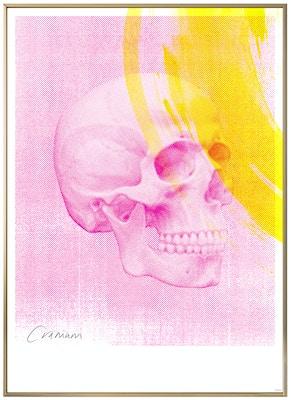 Anatomisk kunstplakat POP5