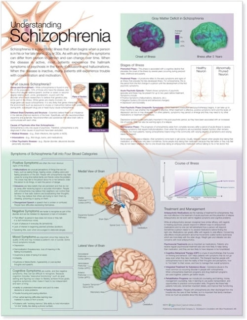 Forstå Skizofreni engelsk lamineret