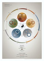5-Elementteorien & Organuret designet af Christian Slot & eAnatomi