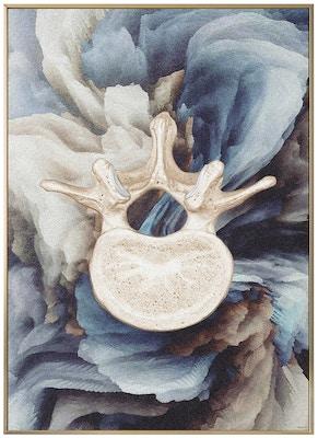 Anatomisk kunstplakat ART3T
