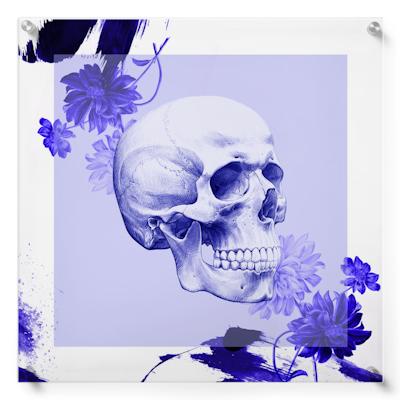 Anatomisk kunstplakat POP1T