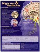 Lamineret plakat om migræne og hovedpine på engelsk