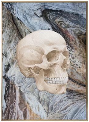 Anatomisk kunstplakat ART1