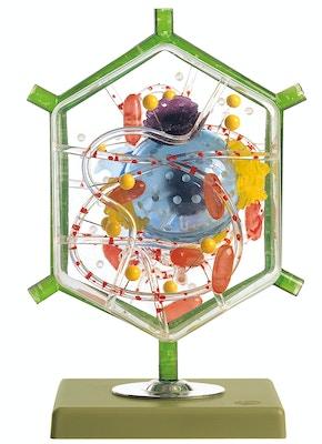 SOMSO Levercelle model