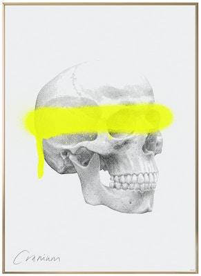 Anatomisk kunstplakat POP4